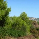 Photo of listing ID ref#7681: Land - Undeveloped for sale in Spain, Javea