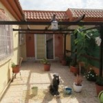 Photo of listing ID ref#8044: Finca for sale in Spain, Los Alcazares