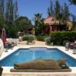 Photo of listing ID ref#882: Villa for sale in Spain, La Nucia